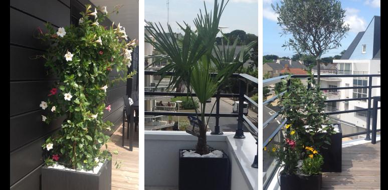 Terrasses et balcons des terrasses et balcons fleuris for Grandes plantes exterieur